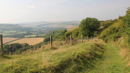 The footpath above Yelcombe Bottom