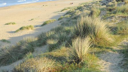 General views of the beach at Winterton looking South along the coast. Picture: James Bass