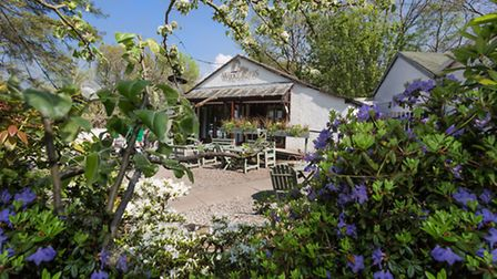 The Woodlands Tearooms