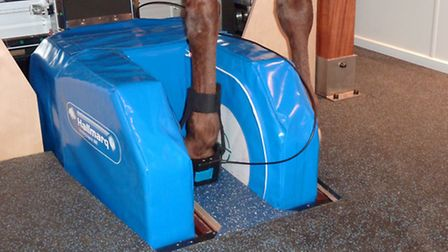 The horseshoe-shaped magnet sits on the floor contained in royal blue padding