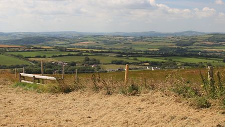 Views to Pilsdon Pen and Lewesdon Hill from The Knoll