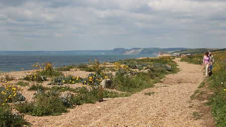 The South West Coast Path route along Chesil Beach with Golden Cap behind