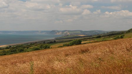 Views to Golden Cap from the footpath after East Bexington