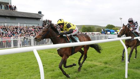 No 4, Henry Brooke on Stags Leap (yellow with black stars) crosses the finish line to win the FIRST