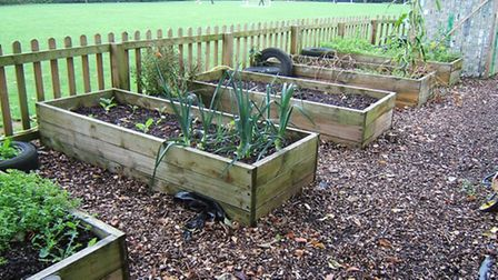 Raised beds at Meare School - the trust supports schools in the county.