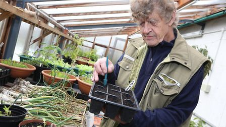 Volunteer Dave Pearson in the Ford Park greenhouse