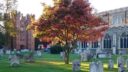 Autumn glory Andrew Napier's seasonal shot in Hadleigh churchyard with the church and deanery tower