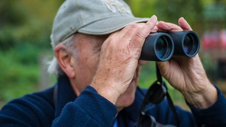 Bird watching is a hobby suitable for all ages © 2015 Matthew Roberts, all rights reserved