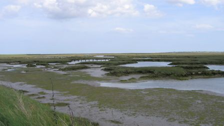 Salt Marsh Little Oakley