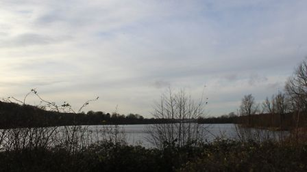 This month's walk is at Whitlingham Country Park, on the edge of Norwich