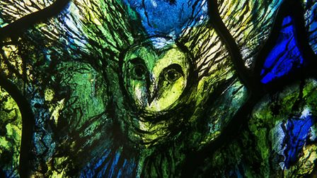 Owl detail from the Millennium Window - All Saints, Bolton Percy by Thomas Denny where nature expres