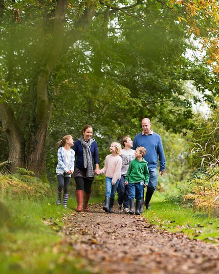 RSPB Strumpshaw Fen is a great place for the whole family to learn about and enjoy nature. Picture: