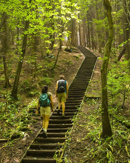 Walkers taking the Tolkien Trail in the Ribble Valley. Photo courtesy of visitLancashire.com