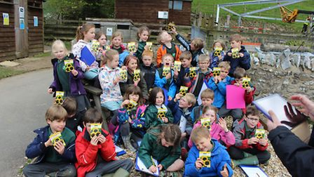 Stockland School takes the Sunflower Challenge