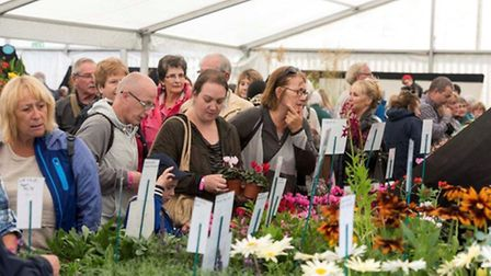 The busy Grand Marquee last year