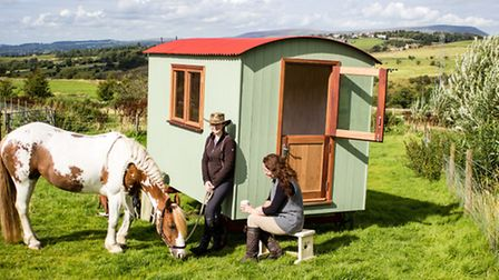 The huts can sell for around £6,000 (picture: Tiny Interactive Media)
