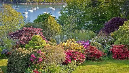 A-view-down-the-Helford-River