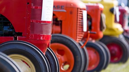 Aylsham Agricultural Show is filled with fun things to see and do.
