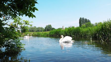 Approaching Bungay on the river waveney