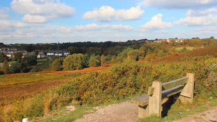 The view across Talbot Heath - a rare survivor of the ancient heath that once stretched from Christc