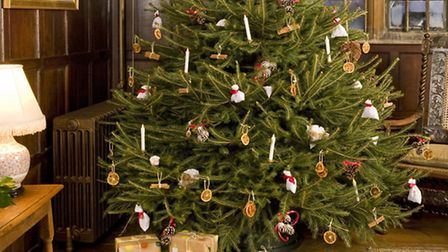 The 18 foot tree in the main hall at Blickling. Picture: NATIONAL TRUST IMAGES