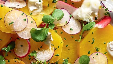 Roasted golden beetroot, watercress and goats cheese salad