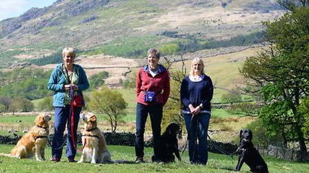 Janet, Sue and Sandra enjoying the countryside responsibly with their dogs