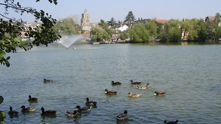 Wildlife has always been significant in Diss Mere, a Norfolk lake once in Suffolk.