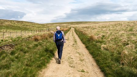 A walker on the Burnley Way