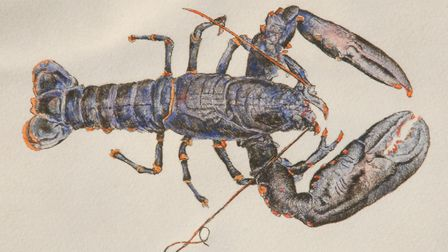 Lobster by Peter Beeson