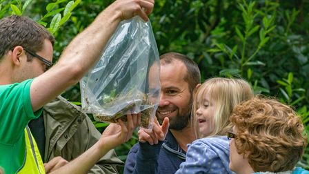 Wildlife Discovery Day: Youngsters will be delighted at what they find