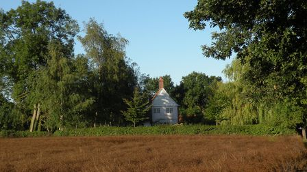 Fields ready for harvesting by the house