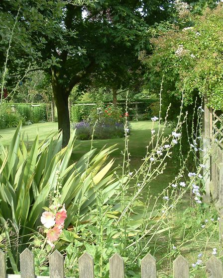 Formal but natural planting nearer the house