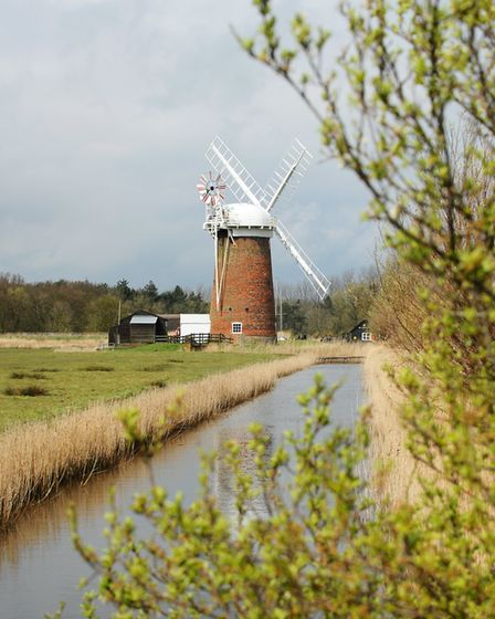View of Horsey Mere Drainage Mill (photo: James Bass)