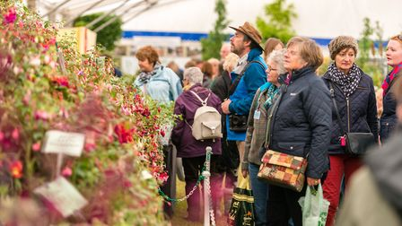 The Flower and Garden Show is a popular attraction at the Suffolk Show.