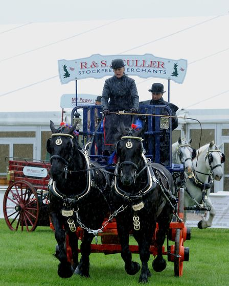 Andy Abbott Column June 8th 2016 Show for all seasons: The glorious Suffolk Show was hugely enjoy