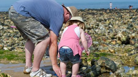 Rockpooling at West Runton (photo: Matthew Roberts)