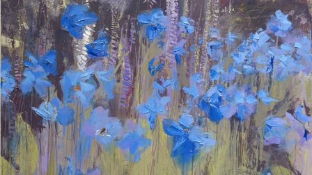 The blues - a meadow full of wildflowers