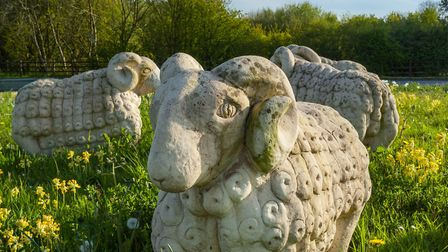 The Rock Flock by Jeff Body, a nod to the town's wool trade heritage (c) Neville Stanikk Photography