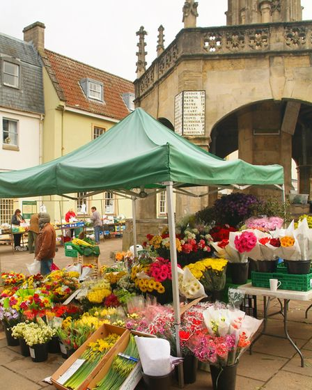 Market day in the town square (c) Neville Stanikk Photography