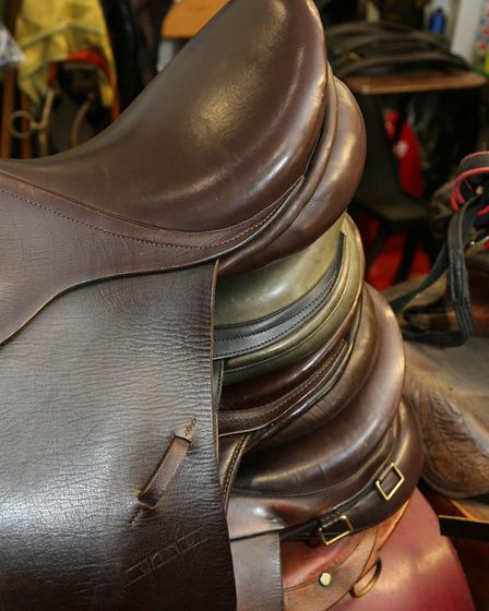 Saddles which have been repaired and are ready for the owners