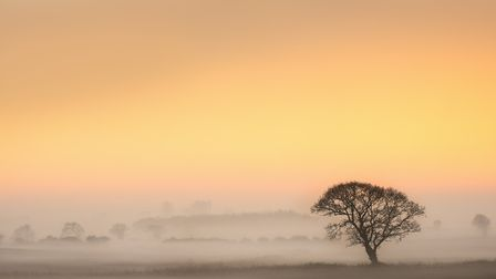 Bacton, north-east Norfolk; Winter sunset over the fields