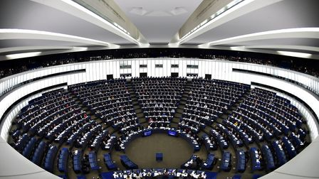Members of the European Parliament take part in voting during a plenary session in Strasbourg. Pictu