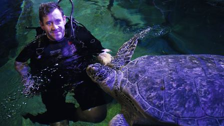 """Darren """"Daz"""" Gook with Noah the turtle who lives in the shark tank at Great Yarmouth Sea Life Centre"""