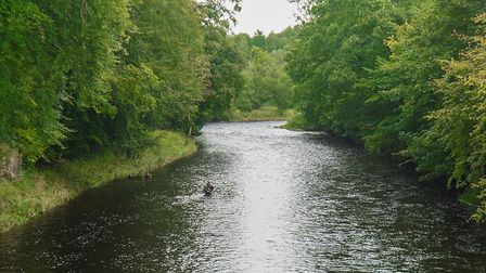 A salmon fisherman in the Ribble