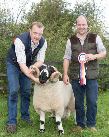James and Robert Whitwell with their 2017 Best of Show lonk tup