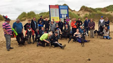 Manchester Terrier mooch at Formby (Picture: Lesley Oblinson)