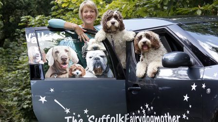 Tracy Root, the Suffolk Fairydogmother