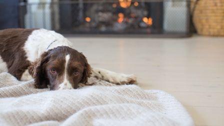 Keep your home warm and cost this Autumn