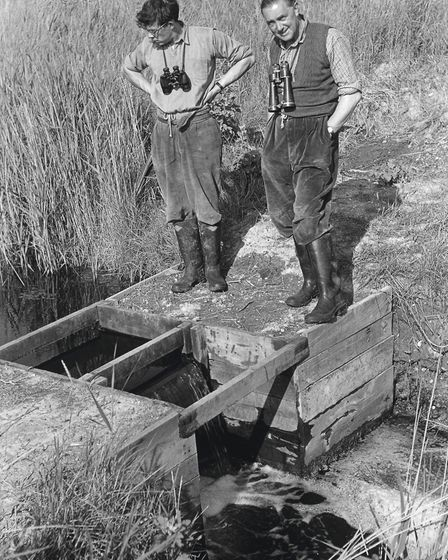 Bert Axell (right) at the RSPB Minsmere Reserve, around 1960
